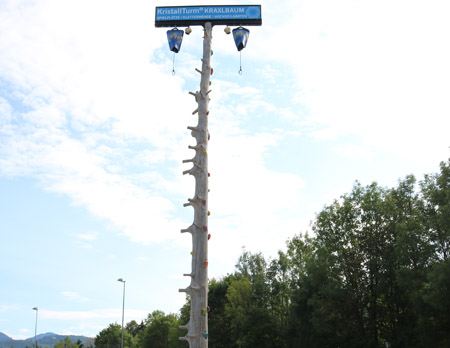 Attraktionen für Events - Kletterbaum