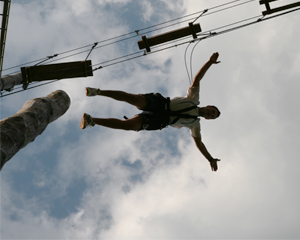 Pamper Pole-2